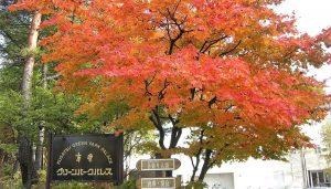グリーンパークパレスの紅葉